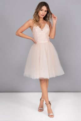 Chi Chi Petite Leyla Tulle Skirt Dress Pink Blush