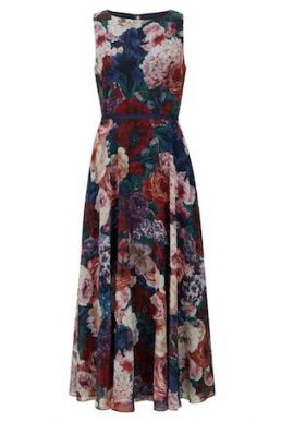 Hobbs Carly Floral Dress Blue Multi