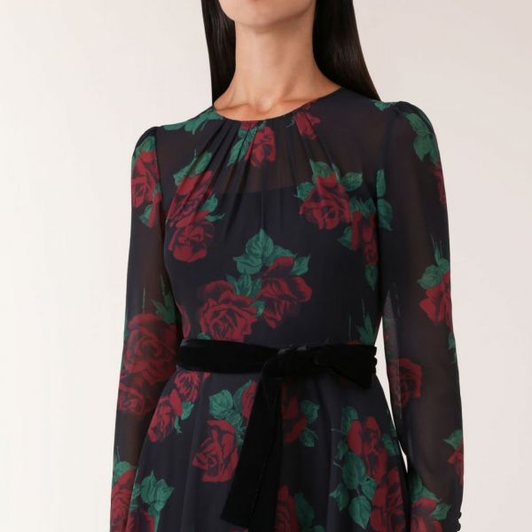 Hobbs Lolita Rose Print Dress Black Red