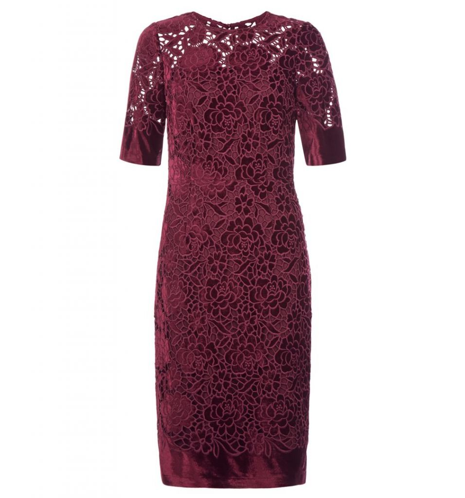 Hobbs Cadence Velvet Lace Dress, Burgundy