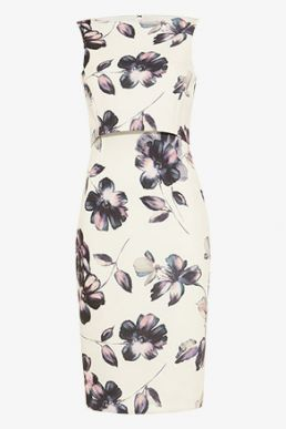 Phase Eight Gracie Floral Scuba Dress Ivory Multi