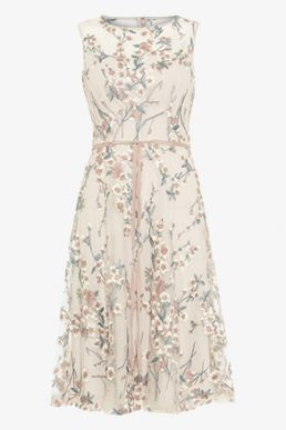 Phase Eight Maddy Fit and Flare Embroidered Dress Oyster Multi