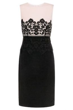 Hobbs Seraphina Lace Dress Dress Pink Blush Black