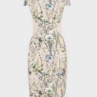 Phase Eight Katarina Floral Dress Blush Multi