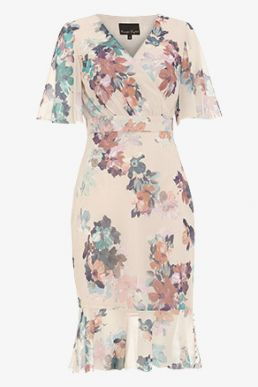 Phase Eight Keely Printed Dress Blush Multi