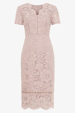 Phase Eight Trinity Corded Lace Dress Pink Blush