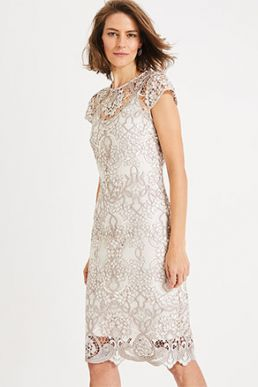 Phase Eight Frances Lace Shift Dress Champagne Oyster