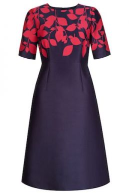 Hobbs Isabella leaf print dress navy pink