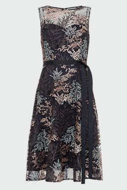 Phase Eight Audrina Embroidered Fit & Flare Dress Black Multi