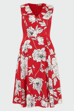 Phase Eight Eve Floral Print Fit & Flare Dress Red White