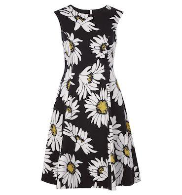 Hobbs Rhona Daisy Print Dress White Black