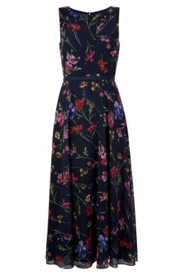 Hobbs Carly Floral Print Dress Navy Multi