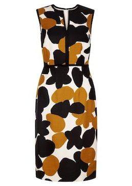 Hobbs Tabitha Print Shift Dress Black Multi