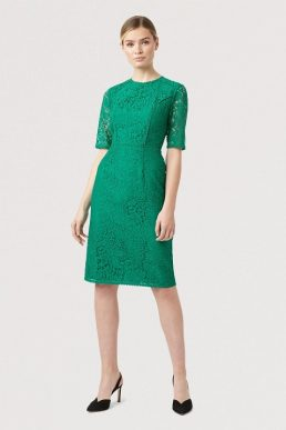 Hobbs Penny Lace Sleeve Dress Meadow Green
