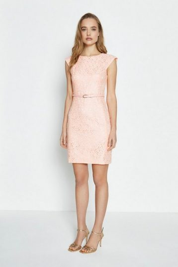 Coast Lace Belted Cap Sleeve Dress Light Pink Blush