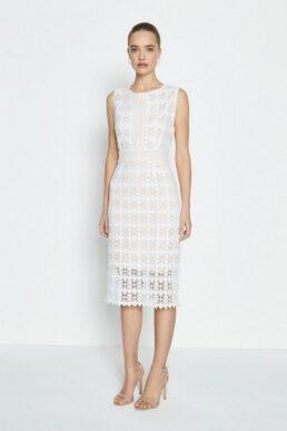 Coast Sleeveless Lace Midi Shift Dress Ivory
