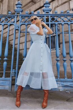Coast Organza Puff Sleeve Dress Light Blue