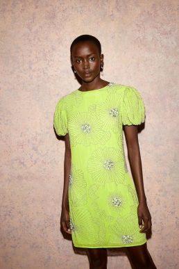 Coast Embellished Lily Puff Sleeve Dress Lime Green