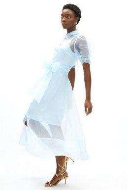 Coast Organza Puff Sleeve Shirt Dress Pale Blue